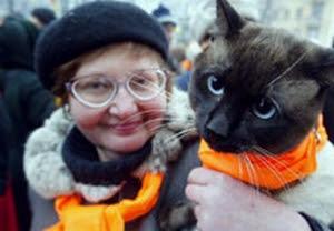 Cat kiev