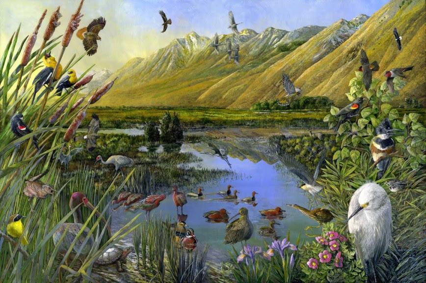 The Nature Conservancy Murals The Art Of Larry Eifert