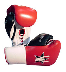 MMA Gear, Boxing Gloves
