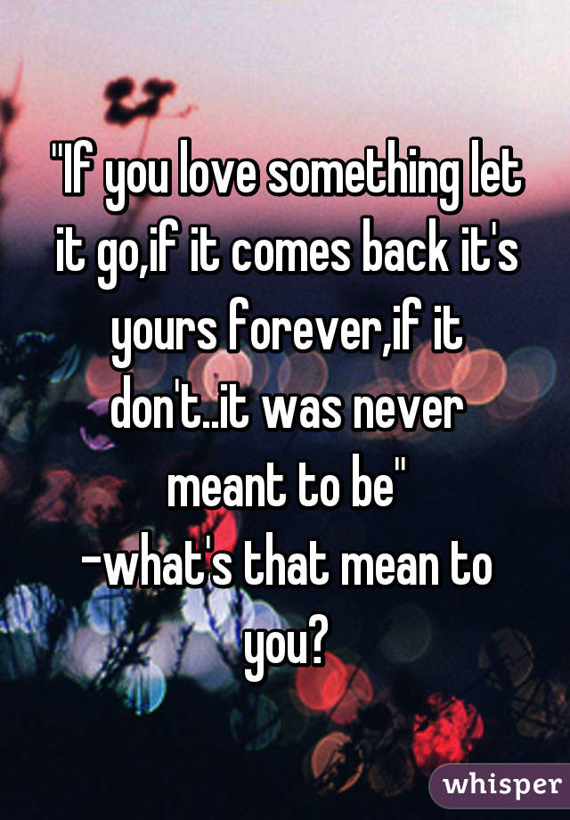 If You Love Something Let It Goif It Comes Back Its Yours Forever