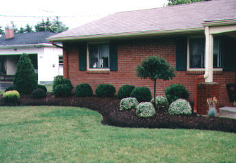 Landscape Design Ideas For Side Of House