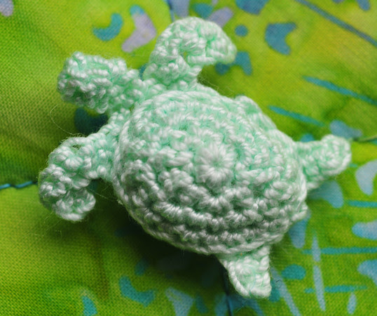 My First Sea Turtle