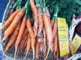 Carrots from Turners