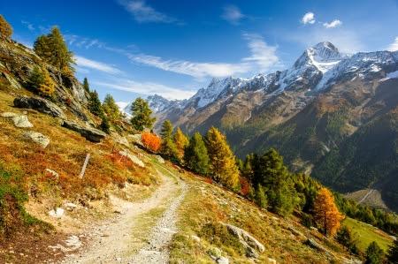 Bietschorn Gipfel im Herbst mit Wanderweg. Blick vom Laucheralp, Lötschental, Wallis, Schweiz Stockfoto - 18461526
