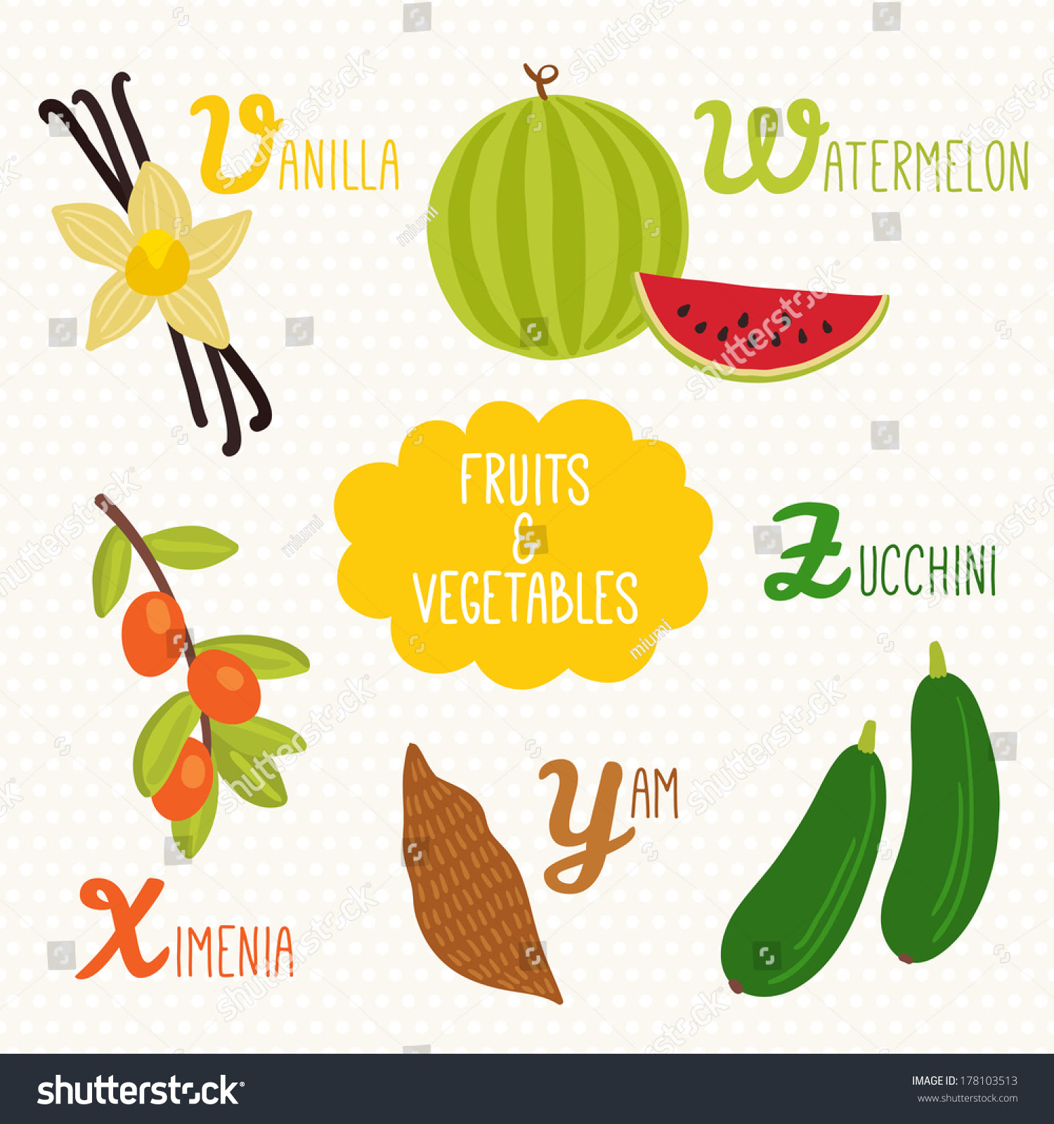 Vegetable Beginning With D - English Lessons