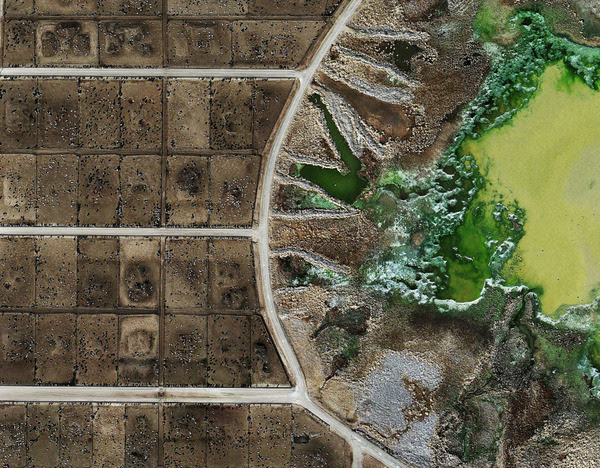 Tascosa Feedyard, Texas (detail) (Mishka Henner, 2013)