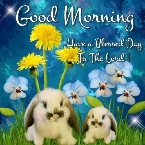 Good Morning Have A Blessed Day More Information