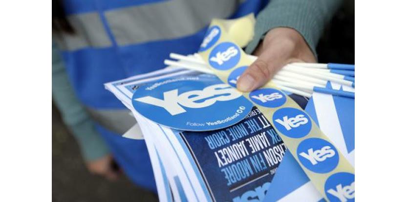 Du matériel électoral pour le oui à l'indépendance de l'Ecosse, le 30 août 2014 à Perthshire (c) Afp