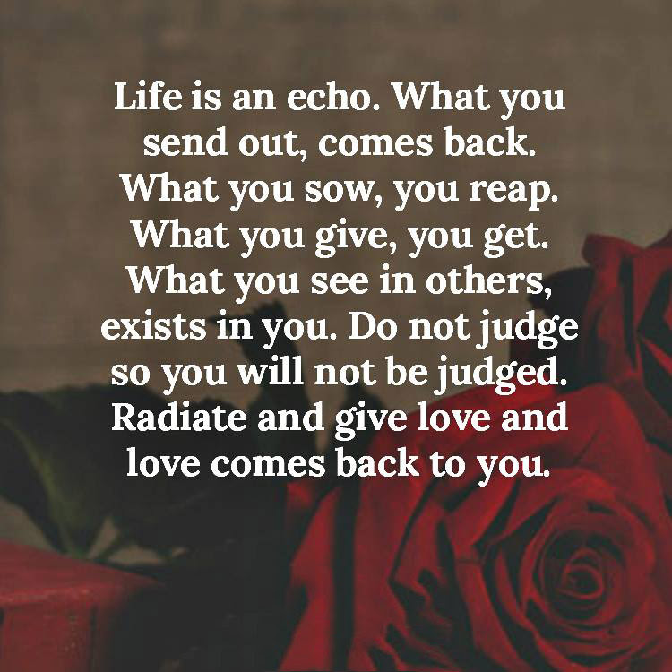 Life Is An Echo Quotes Area