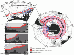 Warm waters carried by the Antarctic Circumpolar Current are brushing the ice front in the western part of the continent, in the area of the Bellingshausen Sea.