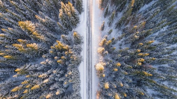 How to Prepare for a Road Trip During the Winter