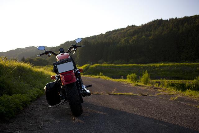 Harley Davidson XL 883R 065