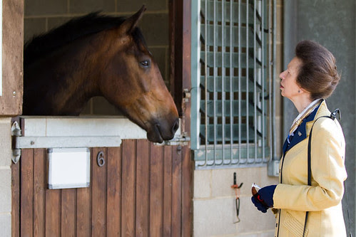 HRH The Princess Royal meets World Horse Welfare Dan