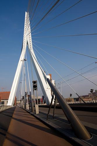 Photo Erasmus Bridge Copyright © Marcus Chia