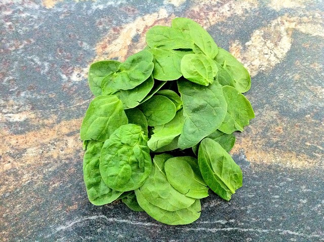 Small Bunch of Spinach