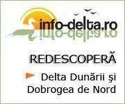 info-delta.ro