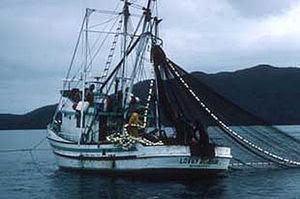 English: A salmon seiner in southeast Alaska. ...