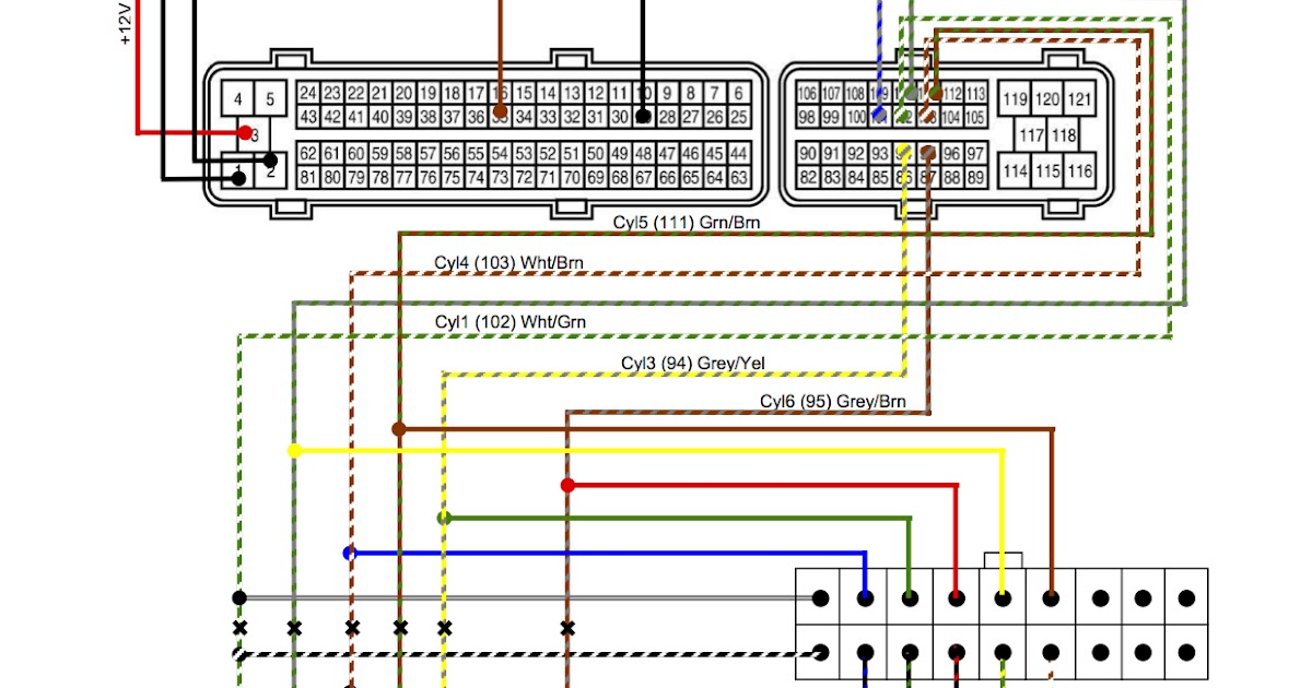 Vs V8 Commodore Ecu Wiring Diagram