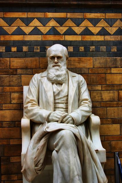 Mr Darwin
