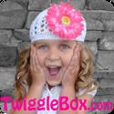 Twiggle Box