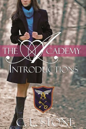 The Academy - Introductions (Year One, Book One) (The Academy Series) by C. L. Stone