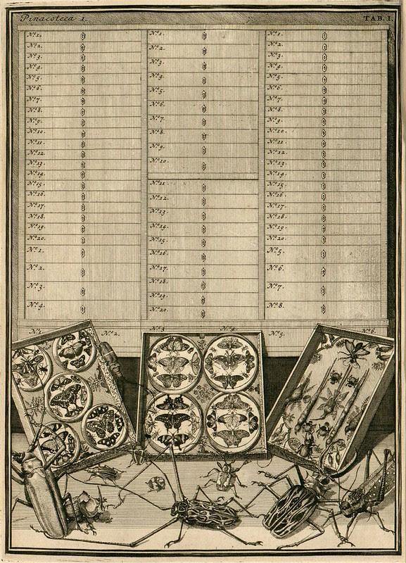 18th c. wunderdammer illustration - Holland