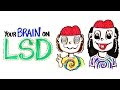 What Happens With Your Brain On LSD And Acid? - Video