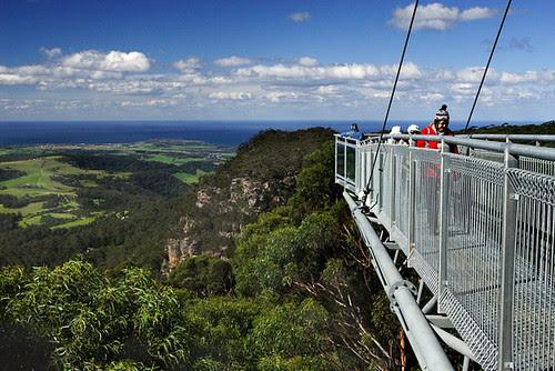 Illawarra Fly Tree Top Walk, Knights Hill, New South Wales, Australia IMG_4536_Illawarra_Fly