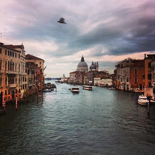 "View from the Ponte dell""Accademia bridge in Venice. Beautiful."