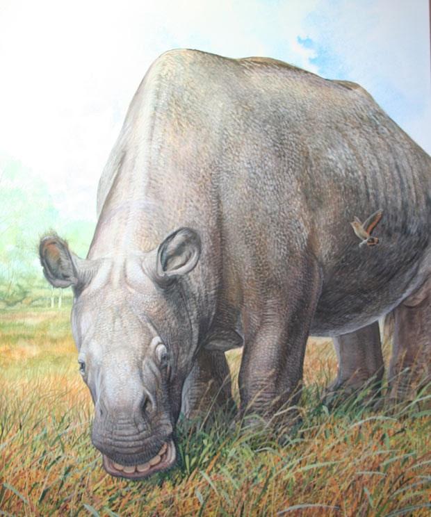 """Toxodonte era parecido com hipopótamo (Foto: Ilustração de Peter Schouten para livro """"Biggest, Fiercest, Strangest"""")"""