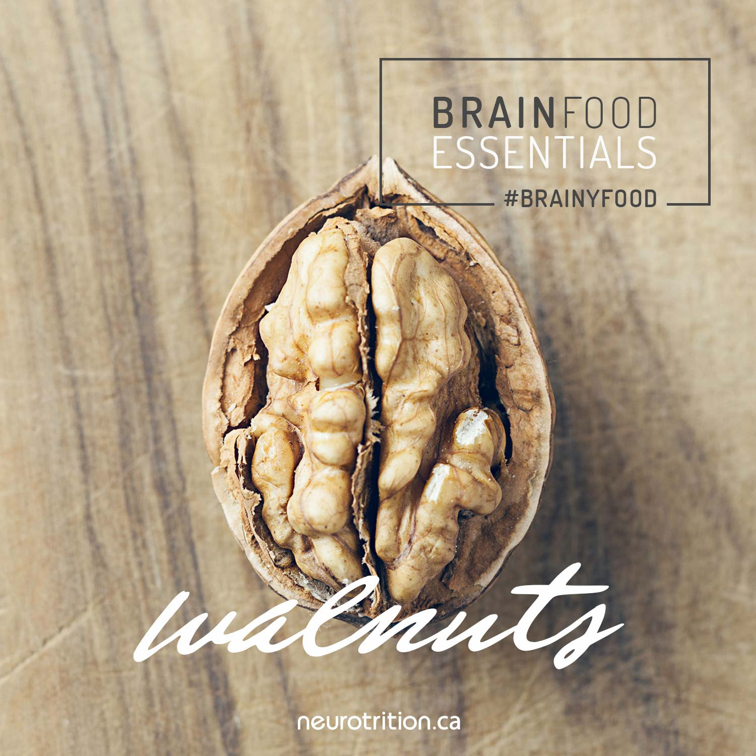 Brain Food Essentials Walnuts Neurotrition