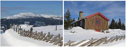 my parent's cabin :: mine foreldres hytte