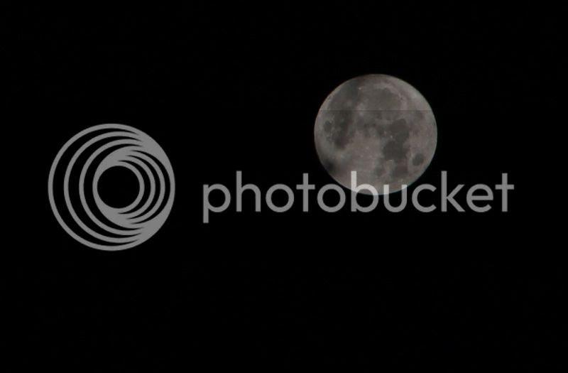 260 2 photo 260 1 IMG_9801 eacute_zpslbzekqqu.jpg