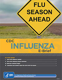 CDC Influenza e-Brief 2015