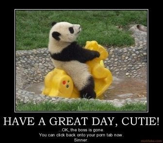 Have A Great Day Cutie Pictures Photos And Images For Facebook