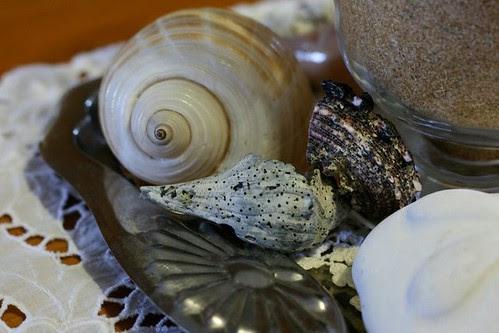 Sea Shell Centerpiece