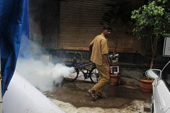 If They Used This in Parliament Mosquitoes Will Not Die .. by firoze shakir photographerno1