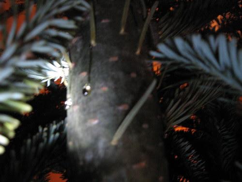 christmas tree close