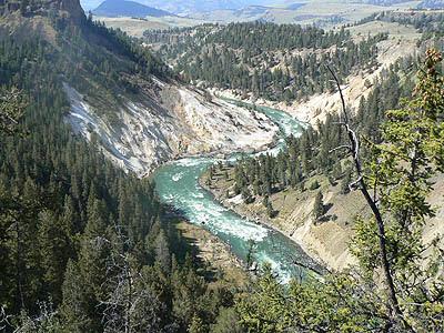 la rivière Yellowstone 1.jpg
