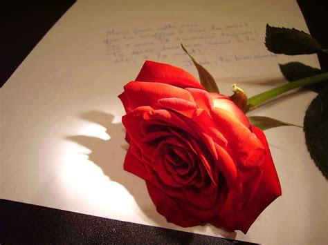 kata kata mutiara cinta bijak romantis islami sedih