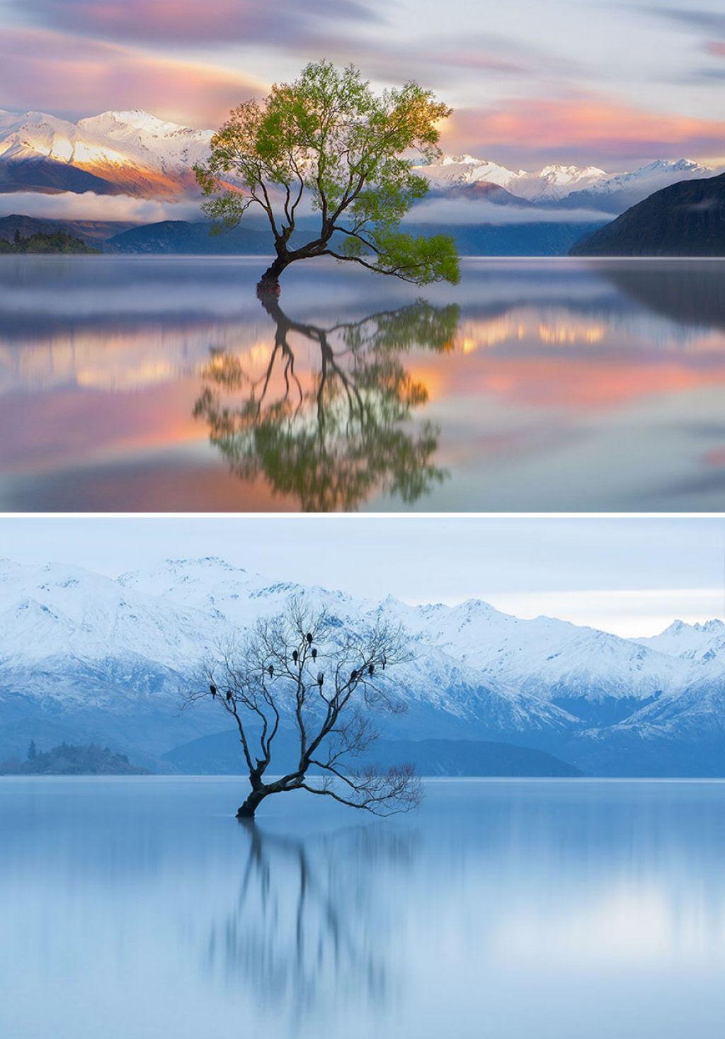 15 fotos de antes e depois da transformações invernais 05