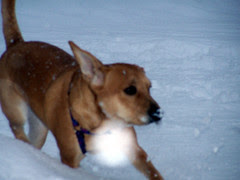 SuperSophie_snow122007b