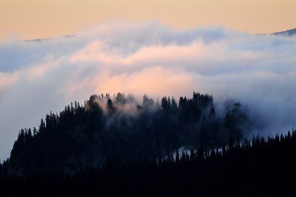 ...a tinted mist of magnificent dreams... Mark Twain