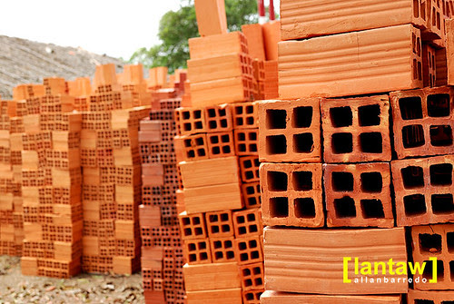 Ben Tre Bricks