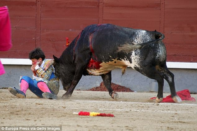 The 23-year-old tried desperately to protect himself, but the bull was still able to ram its horns into his face
