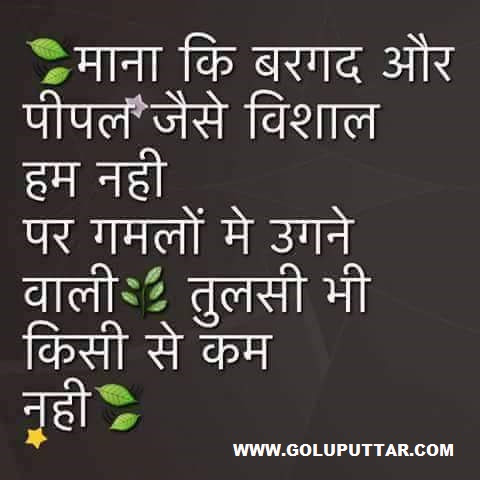 Brilliant Motivational Quote Words In Hindi Photos And Ideas