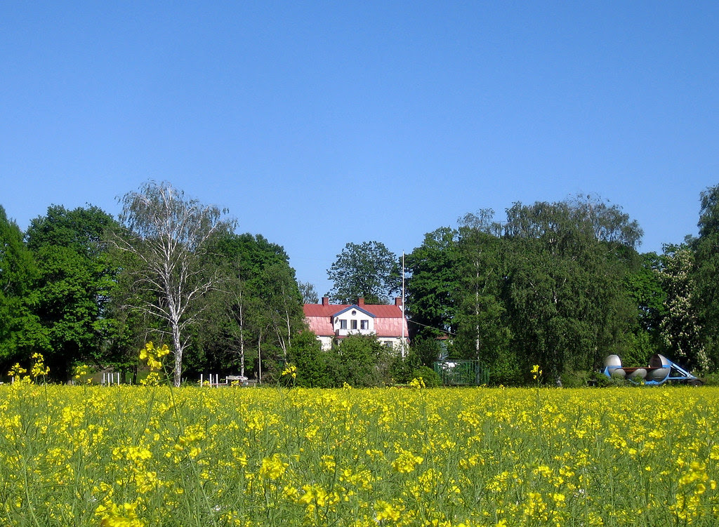 Summer at the old farm