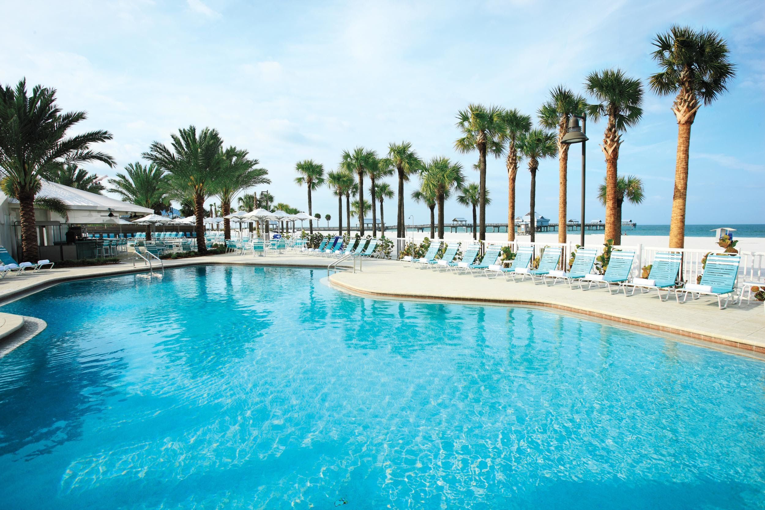Hilton Clearwater Beach Resort  Spa  Clearwater FL