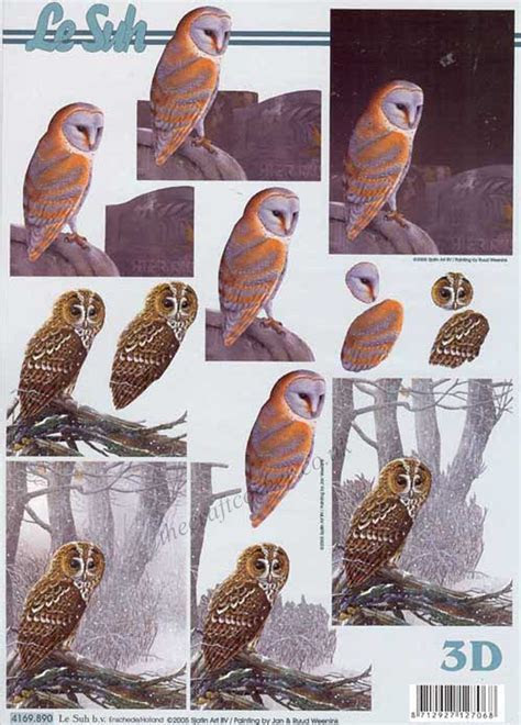 Owl 3d Decoupage Sheet by Le Suh