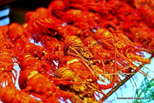 lobster17